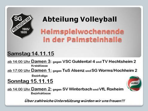 Plakat Heimspiel 14.11.15